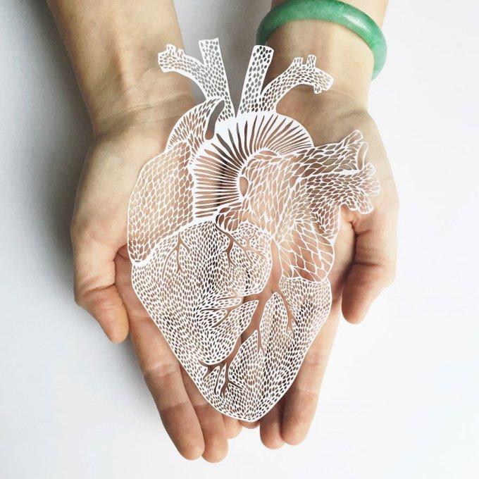 Recorto a mano en papel órganos anatómicos