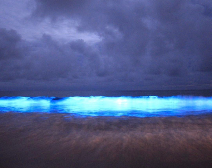 La maravillosa playa de Tasmania que se vuelve azul resplandeciente gracias a la naturaleza
