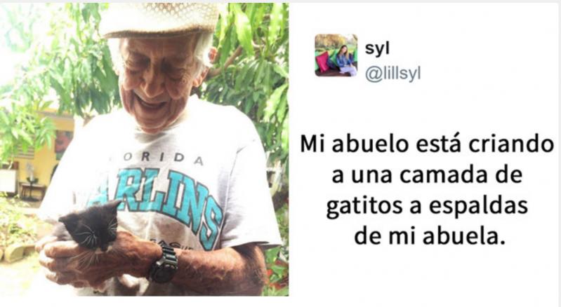 Este abuelo cuidó a escondidas a unos gatitos callejeros después de que su esposa le dijera que no se los podía quedar