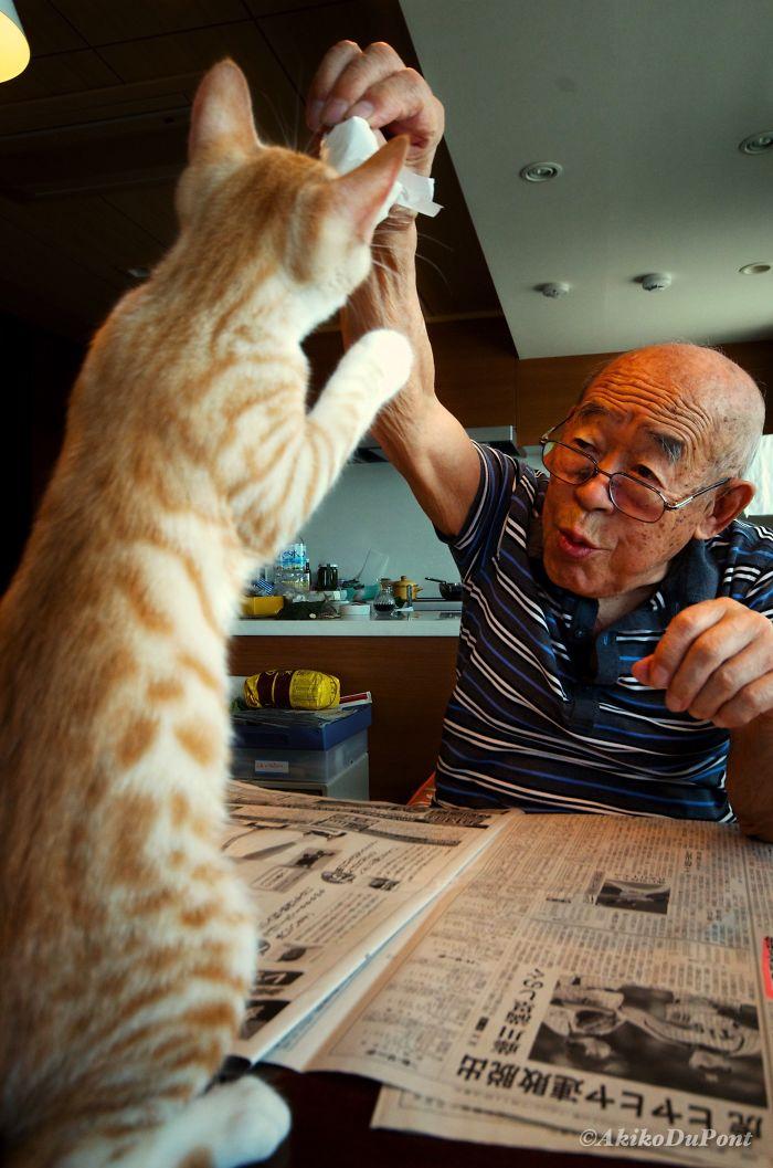 Le traje un gato a mi abuelo enfermo y gruñón, y le ha cambiado la vida