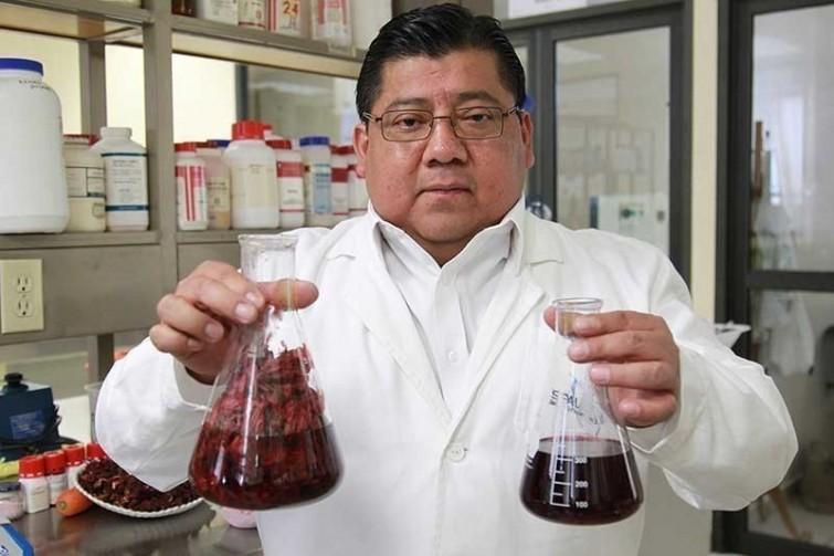 Encuentran una flor que mata más bacterias que el mismo cloro