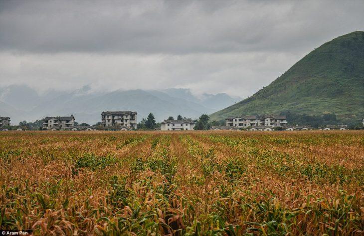 El lado amable de Corea del Norte que pensaban que no existía